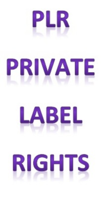 Product picture PLR (Private Label Rights) Internet Marketing Articles